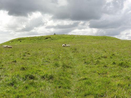 SS 1 mound