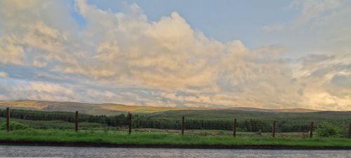Liz Weir's view