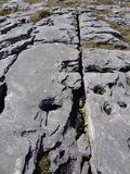 Ireland Trip 2011 EW00259 06_10_11