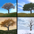 The_four_seasons
